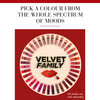 Bourjois Rouge Edition Velvet Lipstick, 33 Brun'croyable (6,7 ml)