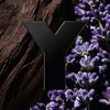 Yves Saint Laurent Y Le Parfum Eau De Parfum 100ml