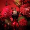 Jean Paul Gaultier La Belle Le Parfum Eau De Parfum 50ml