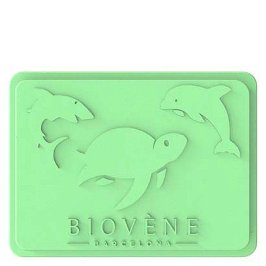 Biovène Universal Case For Storage & Travel Case, Mint Green 1 Stück