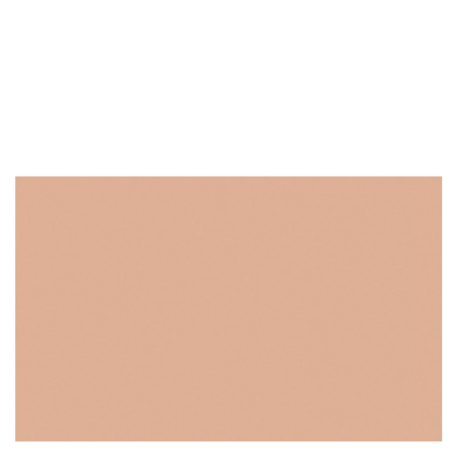 Shiseido Sheer And Perfect Compact Foundation SPF15 10 g - #I40 Ivory Fair